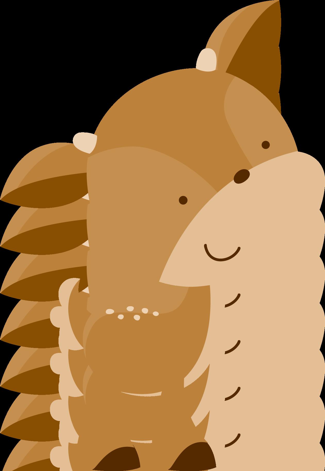 Woodland Animal Drawings