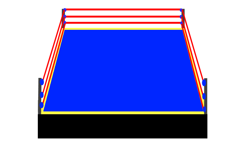 Wrestling Ring Drawing