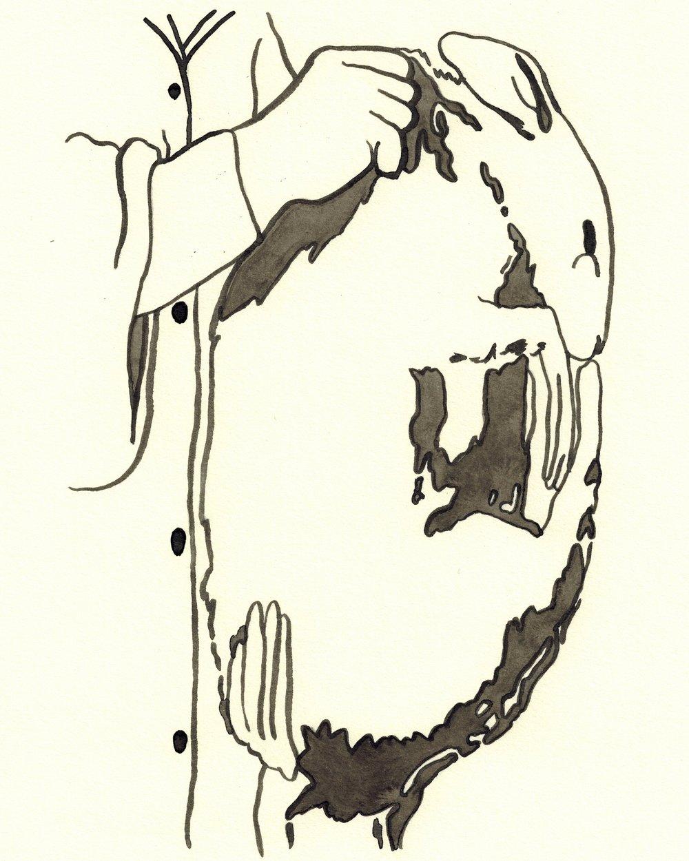 1000x1250 Drawings Pegacron