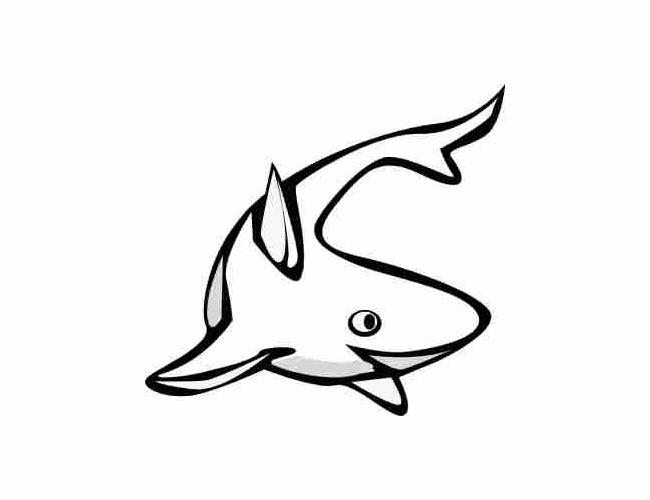 650x500 fish templates free premium templates