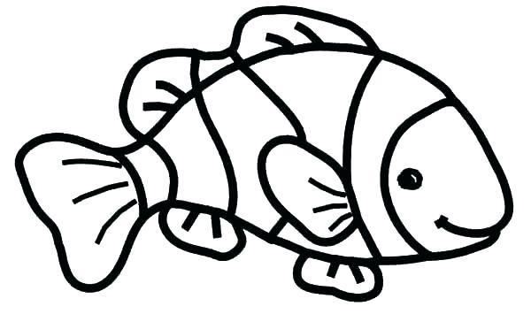 600x355 X Ray Fish Coloring