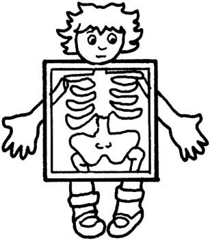 307x350 Aboriginal X Ray Colouring Pages Preschool Coloring Pages