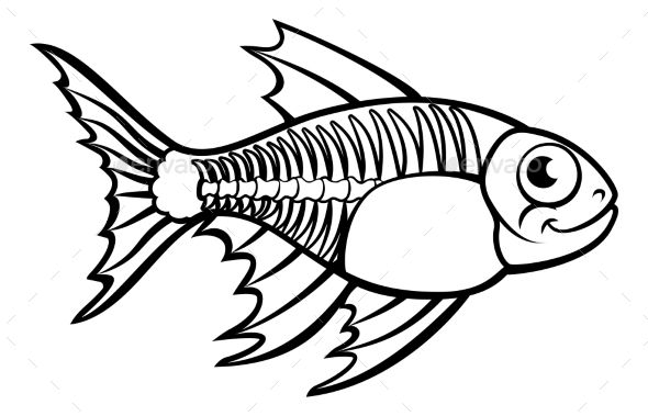 590x379 An X Ray Tetra Fish Animal Cartoon Character Outline Coloring