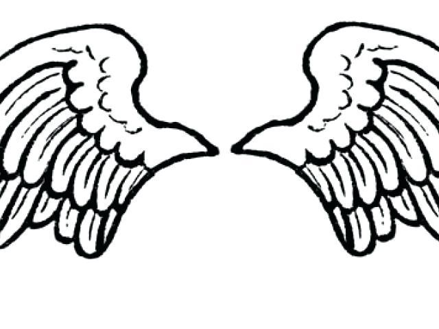 640x480 Angel Wing Clipart Akshayreddy