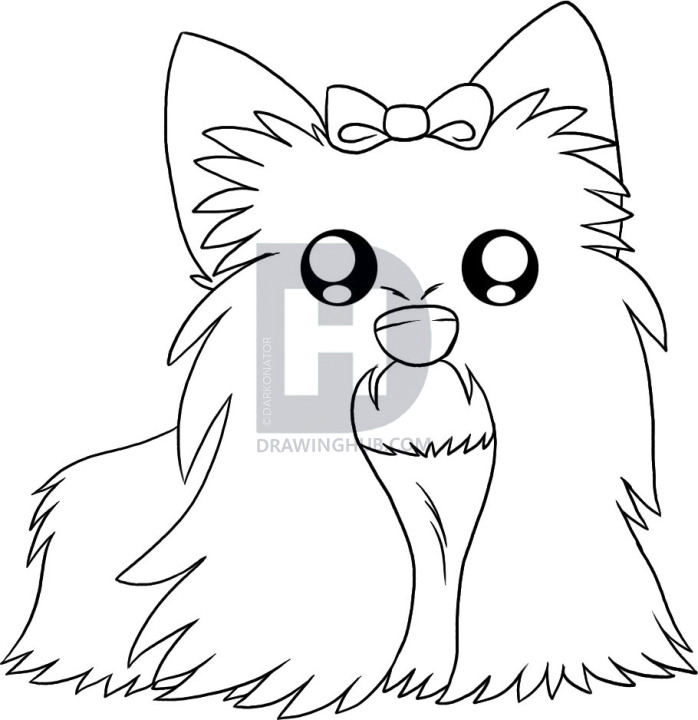 Yorkie Dog Drawing Free Download Best Yorkie Dog Drawing On