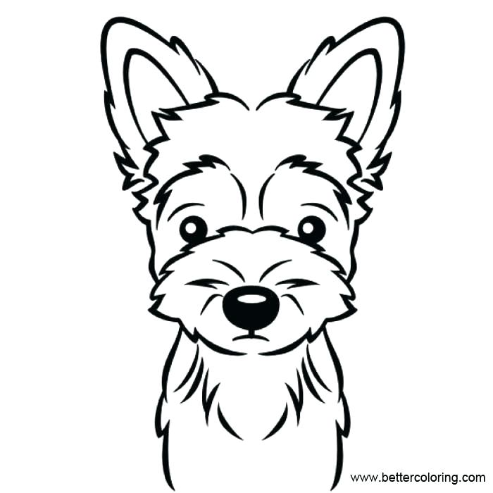 Collection of Yorkie clipart   Free download best Yorkie ...