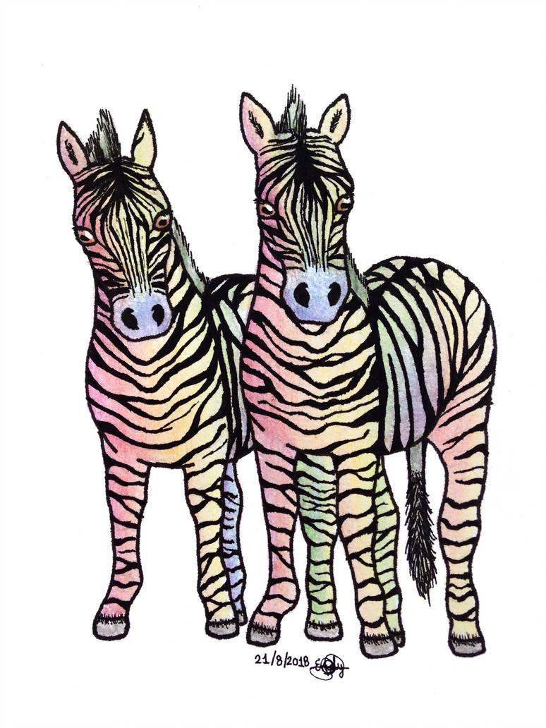 774x1032 Zebra Drawing