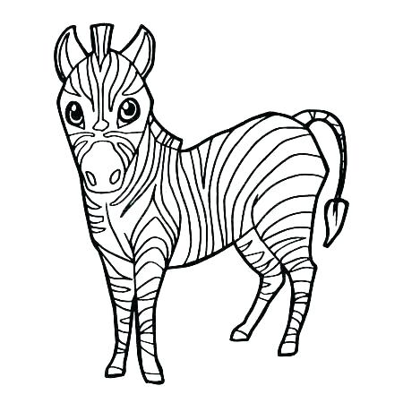 450x450 Simple Zebra Drawing Running