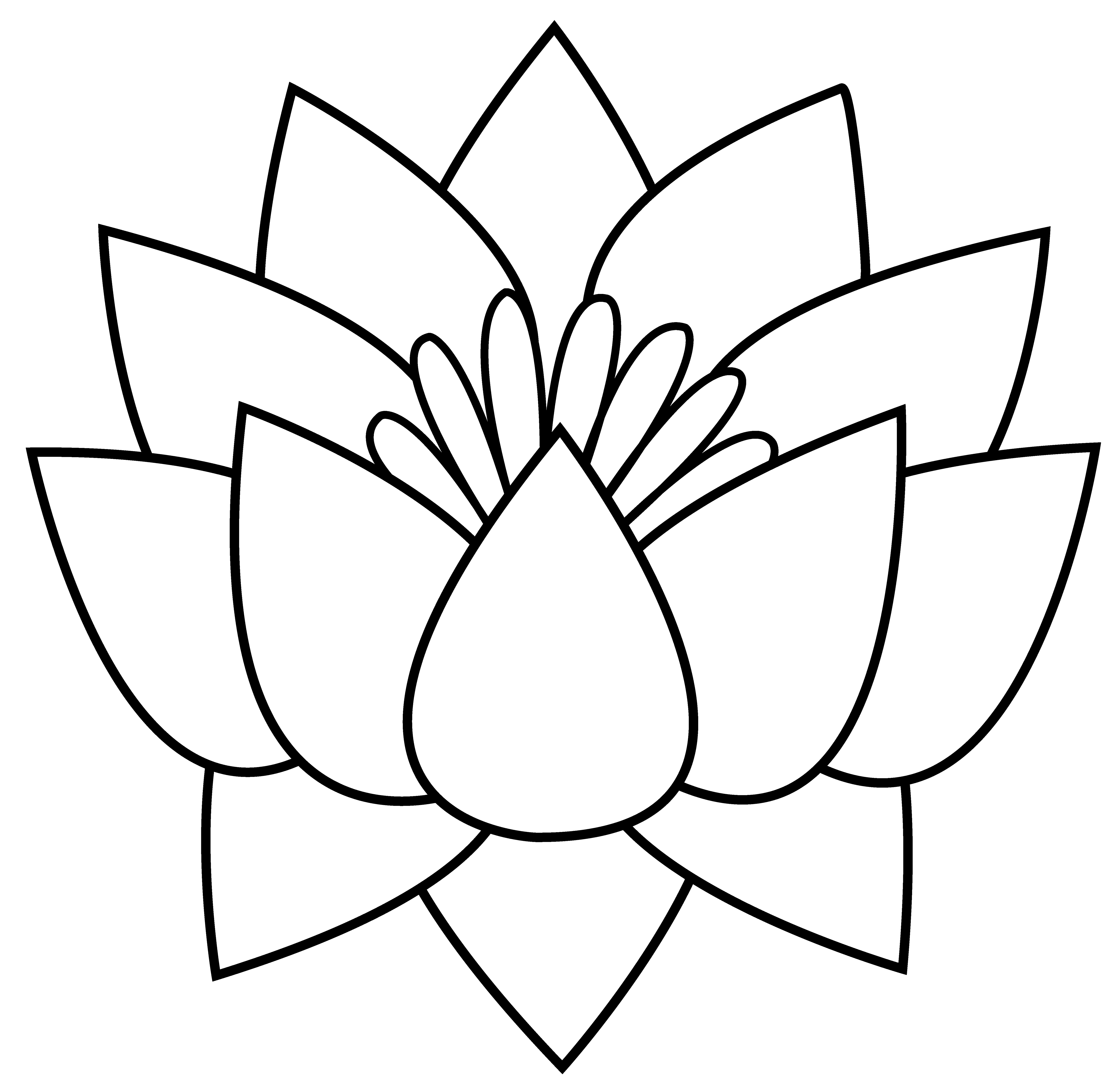5655x5476 Collection Of Free Outline Drawing Lotus Flower Download On Ui Ex