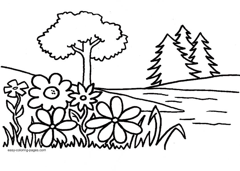 842x598 Outline Drawing Garden For Free Download