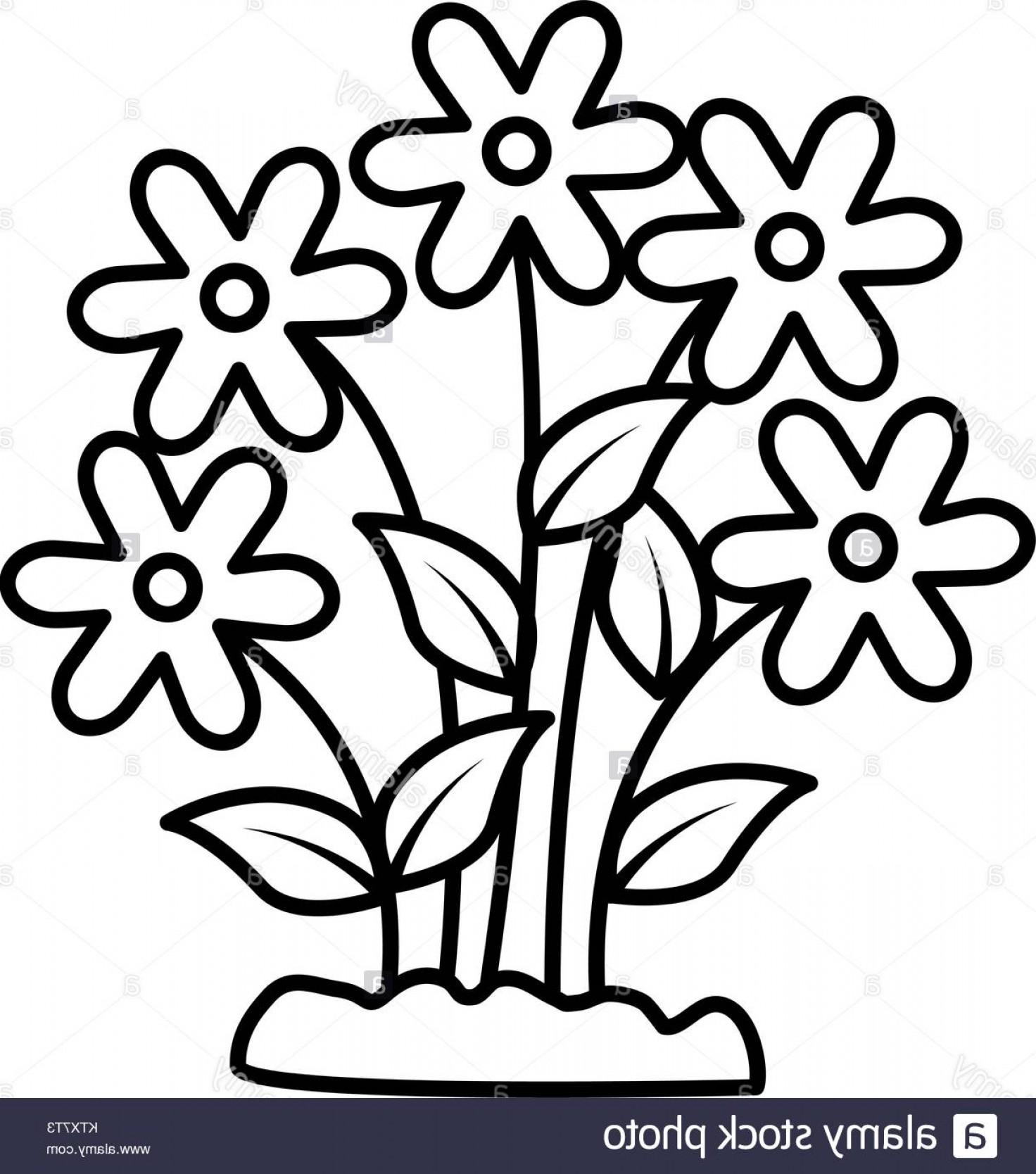 1472x1668 Vector Black And White Flower Garden Soidergi
