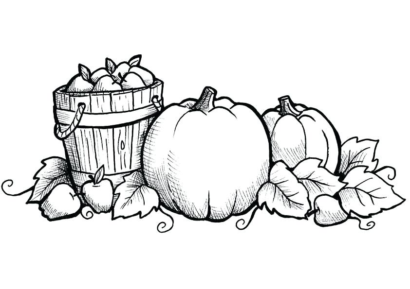 1st Grade Coloring Pages | Free download on ClipArtMag