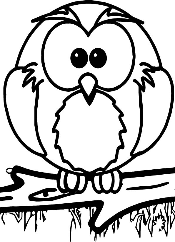 595x826 1st Grade School Owl Coloring Page Wecoloringpage