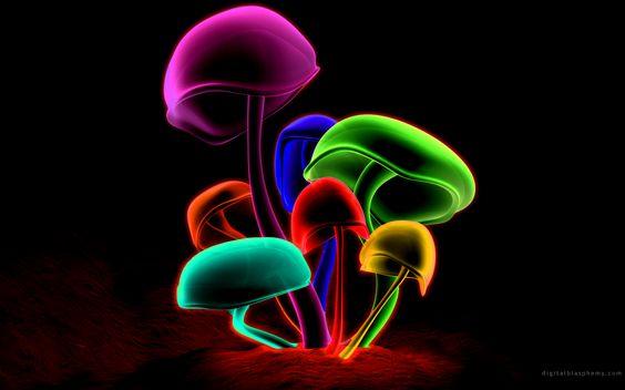 564x352 Cool 3d Wallpaper Mushrooms Wallpapers Desktop Wallpapers