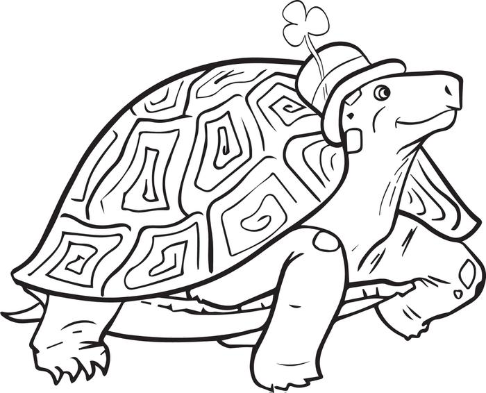 700x566 Free, Printable St. Patrick's Day Turtle Coloring Page For Kids