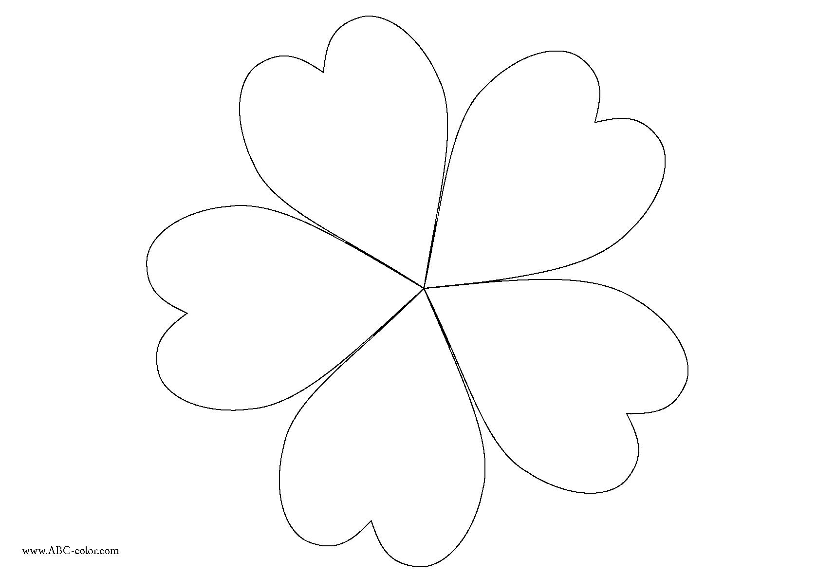 1715x1183 Five Petal Flower