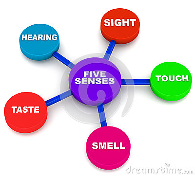 400x362 Clipart 5 Senses