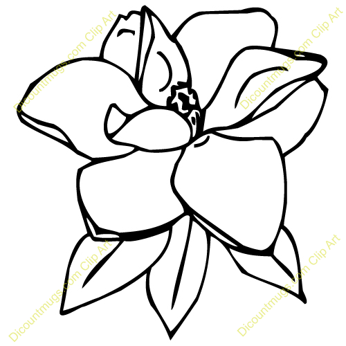 6 petal flower clipart free download best 6 petal flower clipart 500x500 magnolia clipart maxwellsz