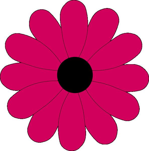 594x600 Pink Two Tone Petals Hi Free Images