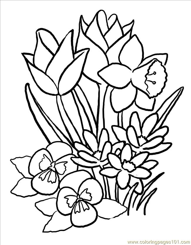 650x835 Free Printable Spring Flowers Coloring Pages