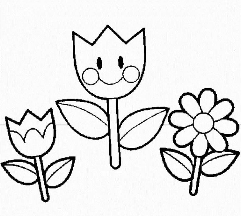 792x708 Coloring Pages For Kindergarten