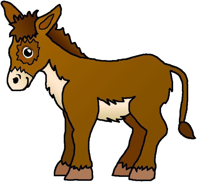 A Picture Of A Donkey