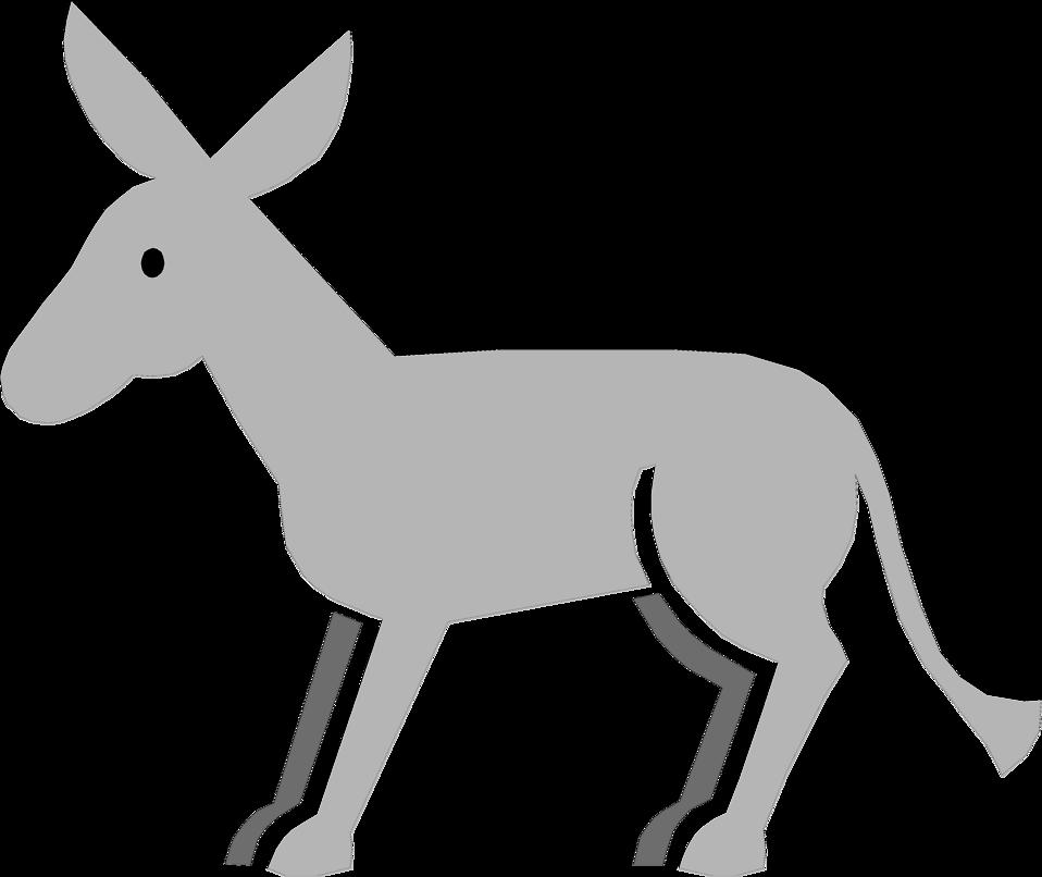 958x806 Donkey Free Stock Photo Illustration Of A Gray Donkey