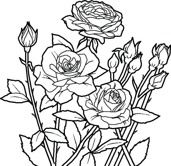 593x577 Abstract Flower Coloring Pages
