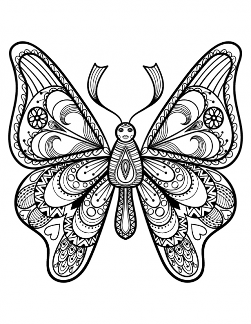 500x646 Advanced Butterfly Coloring Page Adult Coloring, Coloring Books