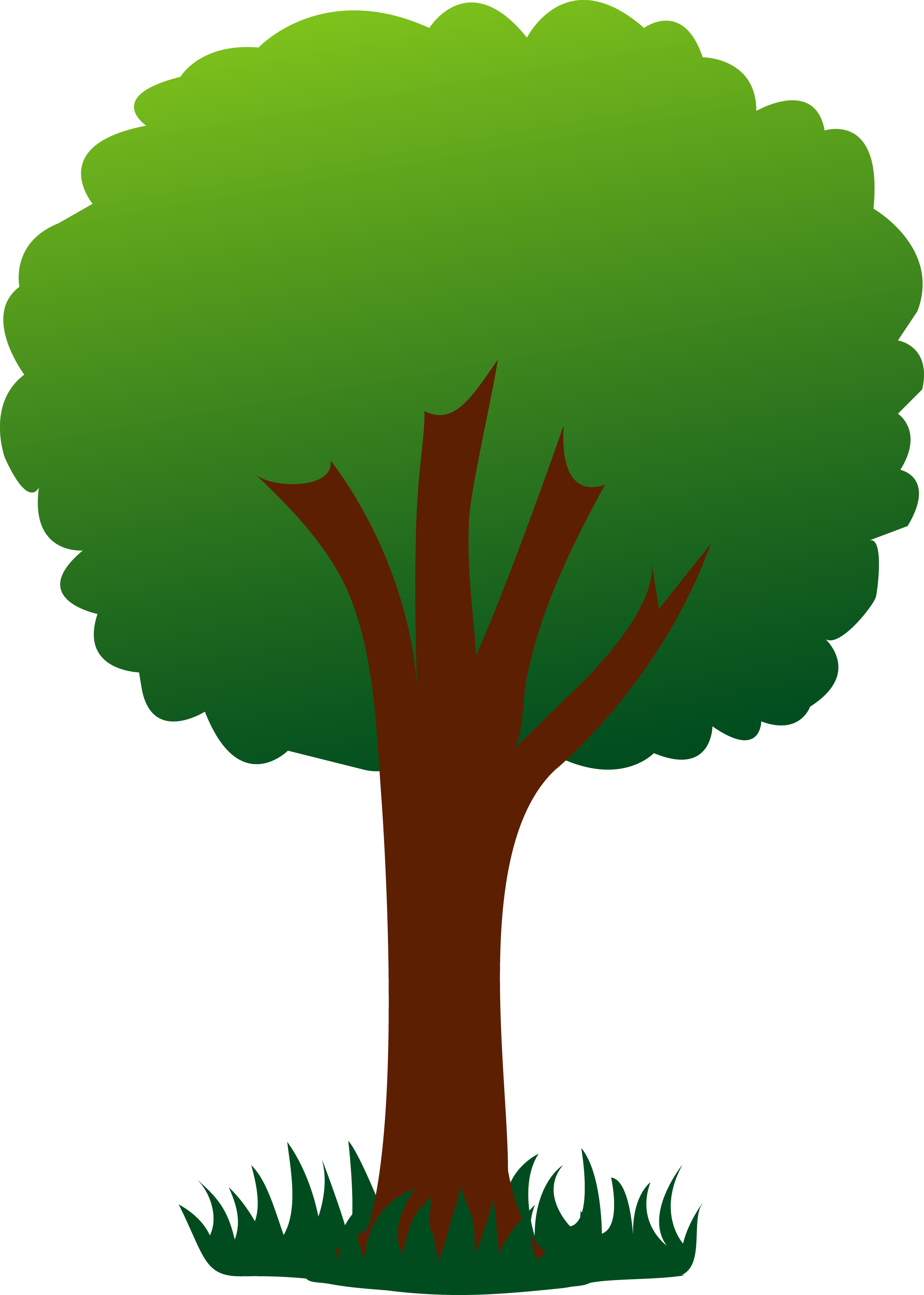2856x4000 Simple Green Tree In Grass