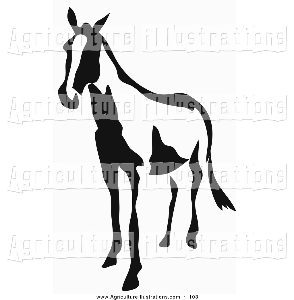 1024x1044 Royalty Free Equestrian Stock Agriculture Designs