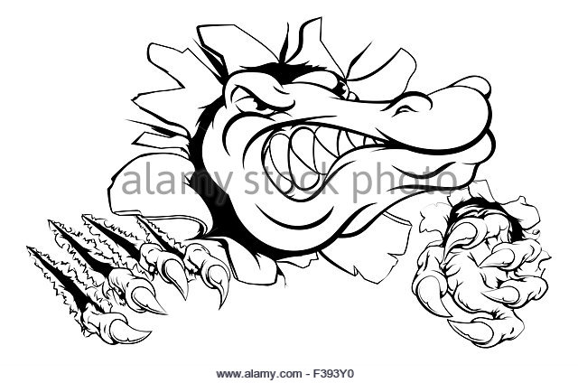 640x424 Angry Alligator Stock Photos Amp Angry Alligator Stock Images