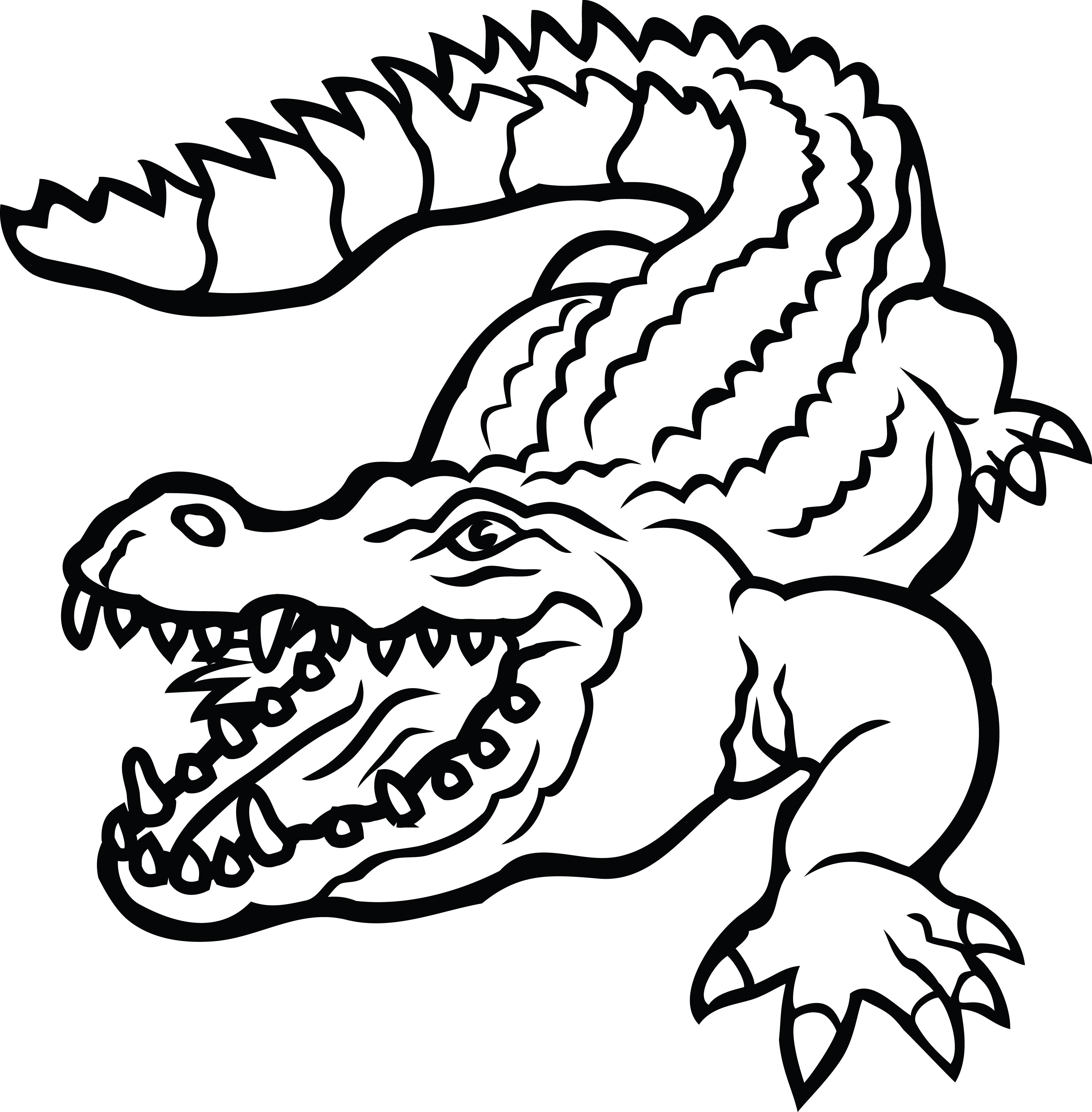 4000x4072 Alligator Clipart Alligator Head