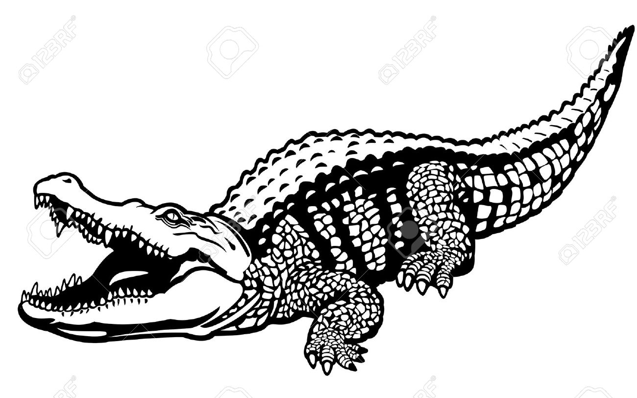 1300x811 Realistic Animal Clipart Black And White Vector