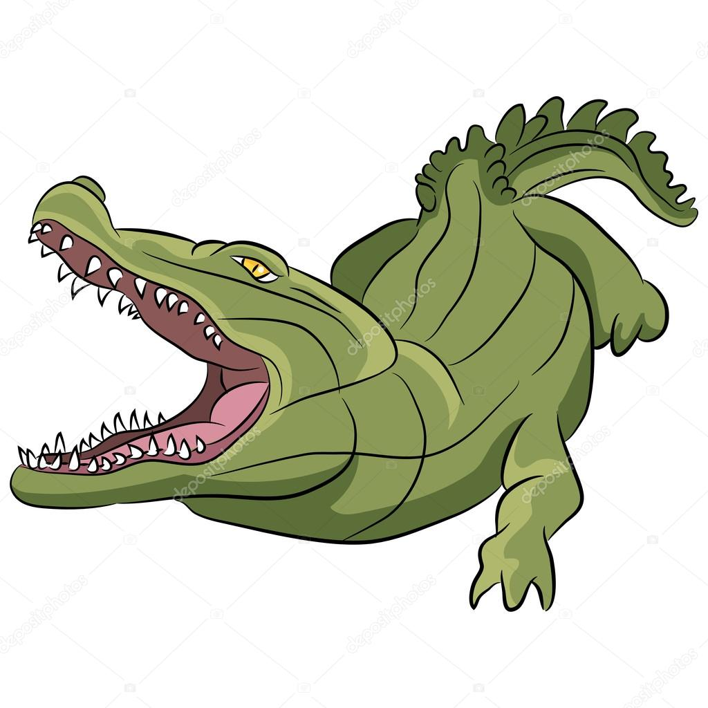 1024x1024 Alligator Cartoon Stock Vector Cteconsulting