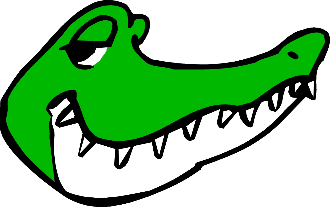1375x864 Cartoon Gator