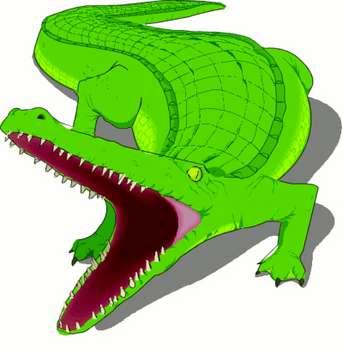 343x350 Crocodile Alligator Cartoon Open Mouth Danasohjj Top Clipart Image