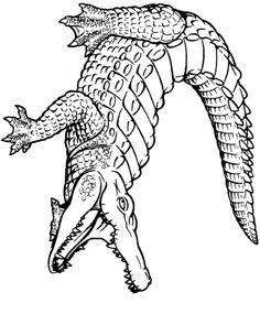 236x285 Alligator Clipart Silhouette