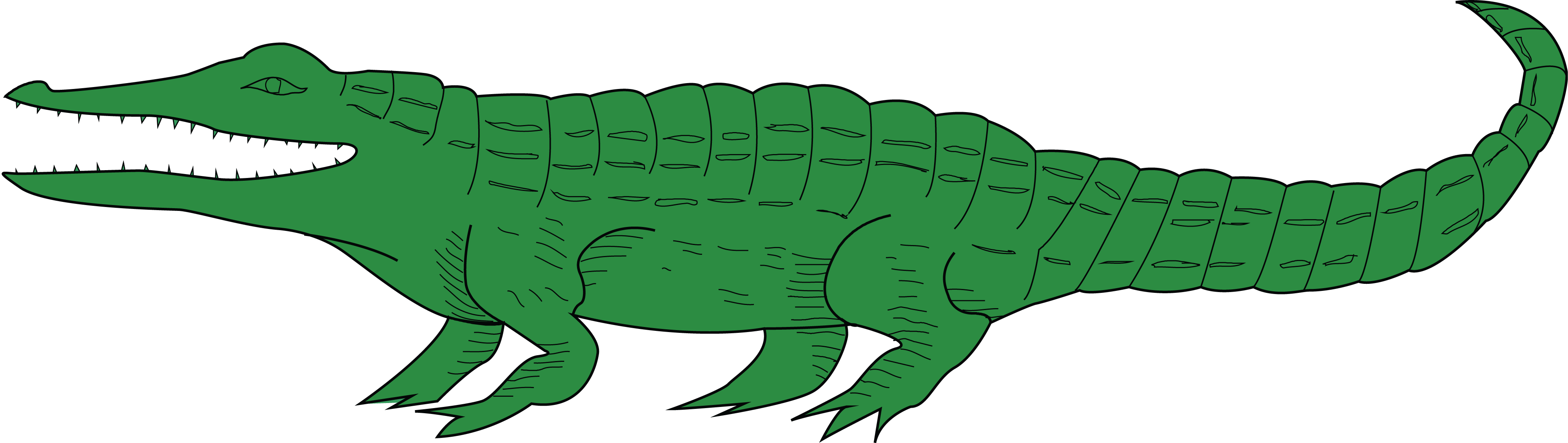 4000x1130 Free Clipart Of A Green Alligator