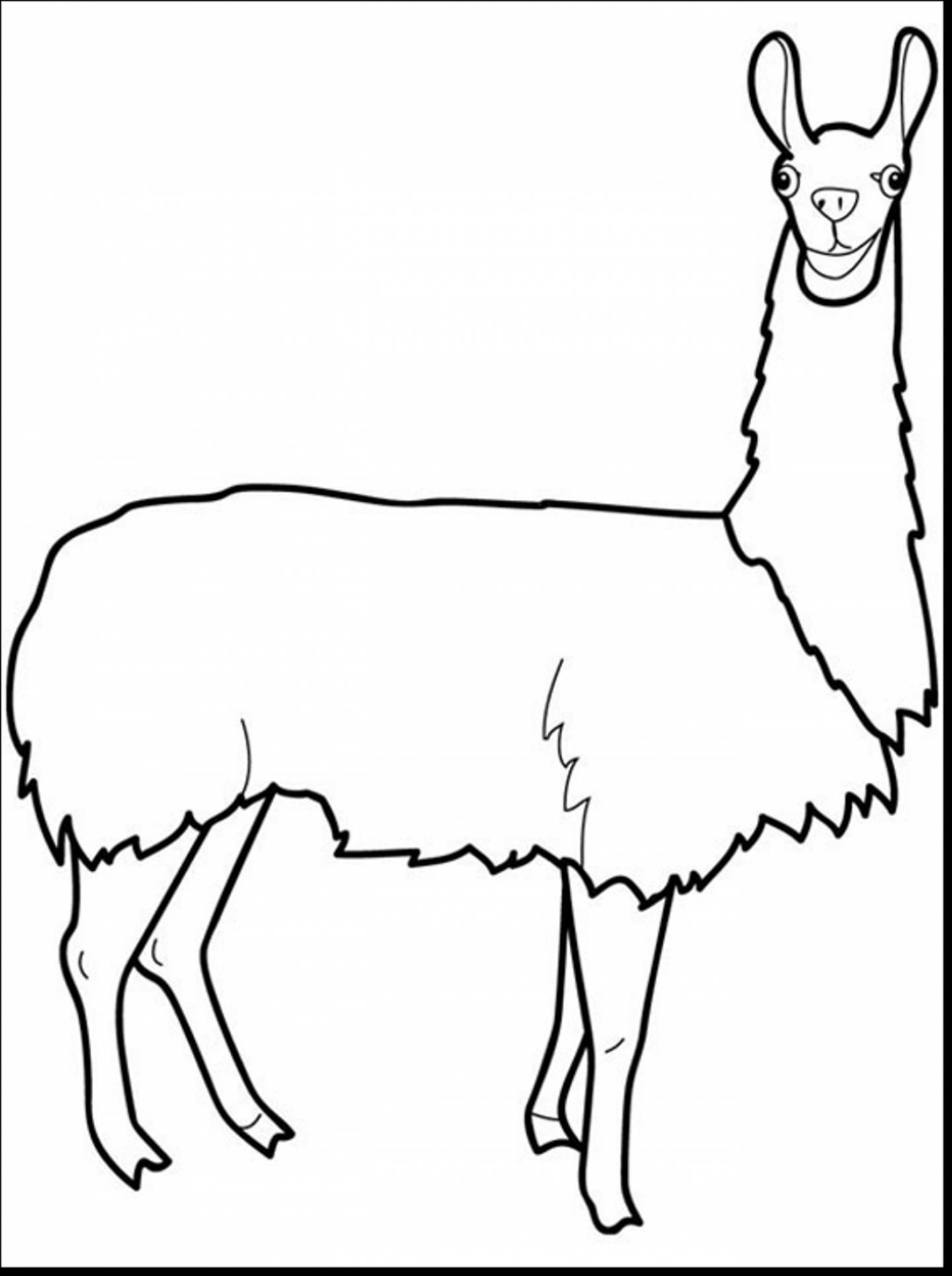 1441x1930 Remarkable Llama Clip Art Black And White With Llama Coloring