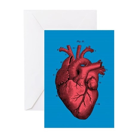 460x460 Anatomical Heart Greeting Cards Cafepress