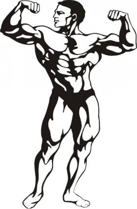 280x425 Bodybuilder Body Clipart