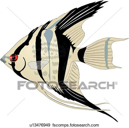 450x445 Clip Art Of Angelfish U13476949