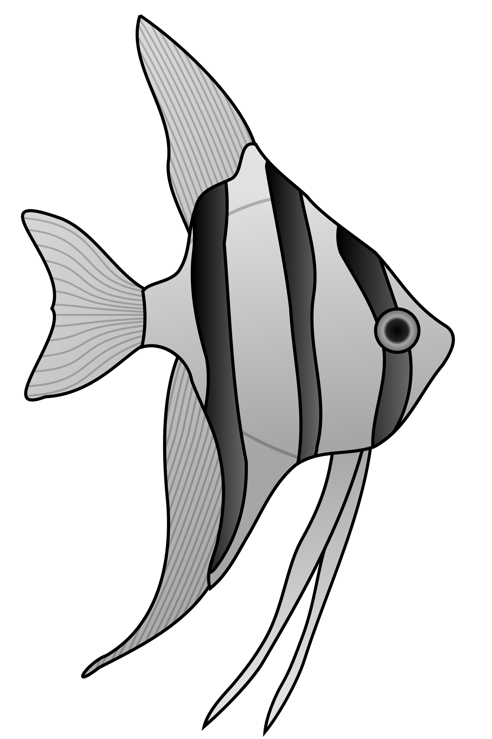 1600x2400 Angelfish Clipart Green Fish