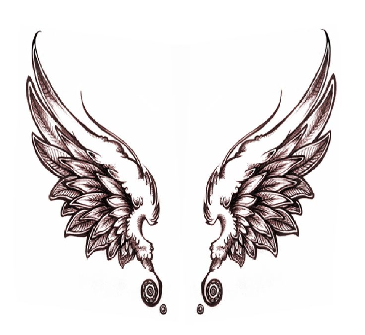 736x677 16 Best Angel Wings Images Ravens, Creative Ideas