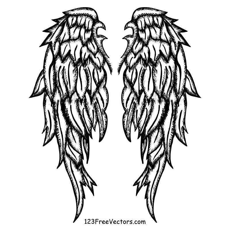 800x800 Drawn Wings Vector Art