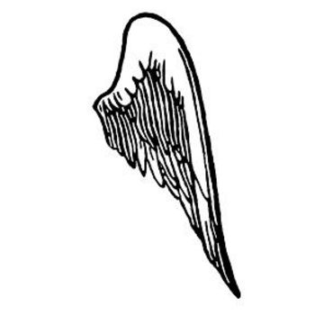350x350 Image Of Angel Wing Clipart
