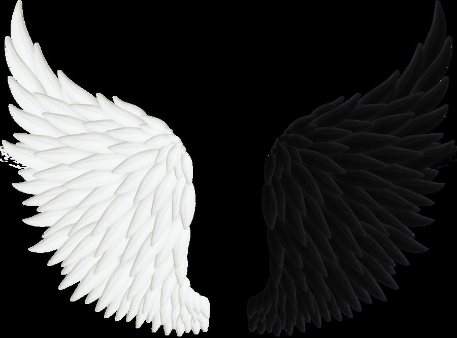 900x667 Angel Wings Png 06 By Thy Darkest Hour