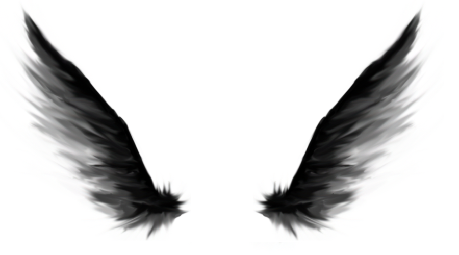 900x500 Dark Angel Wings By 27subarashii