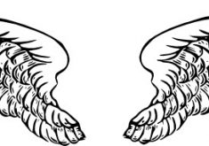 235x165 Glamorous Wings Clip Art Angel Wing Templates Clipart Kid